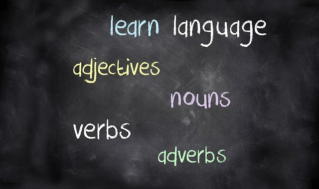 The best vocabulary builder app