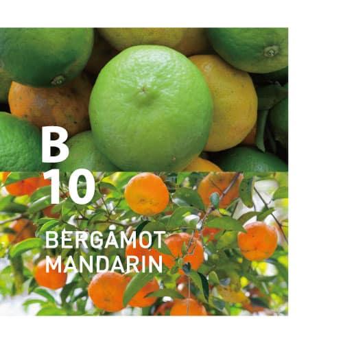 B10 BERGAMOT MANDARIN