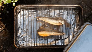 roken van makreel