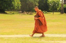 AngkorWatTapinaklari25