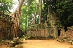 AngkorWatTapinaklari75