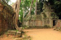 AngkorWatTapinaklari86