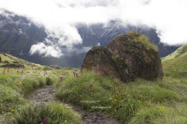 AnnapurnaBaseCamp77
