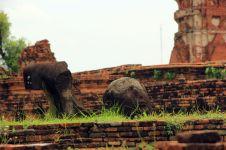 Ayutthaya14