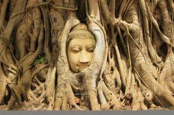 Ayutthaya26