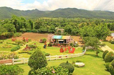 ChiangMai31