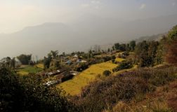 Pokhara19