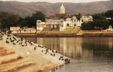 Pushkar11