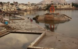 Pushkar14