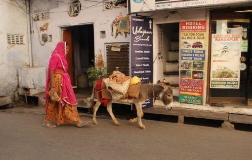 Udaipur27