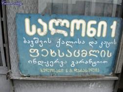 Zugdudi13