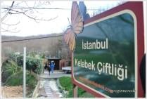 İstanbul Kelebek Çiftliği giriş