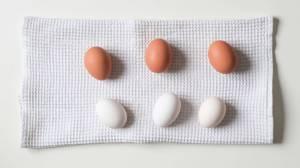 Koolhydraatarm eten: op de gezonde tour