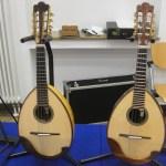Zwei Mandolinen von Alfred Woll