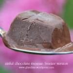 sinful chocolate mousse cake: freezer version