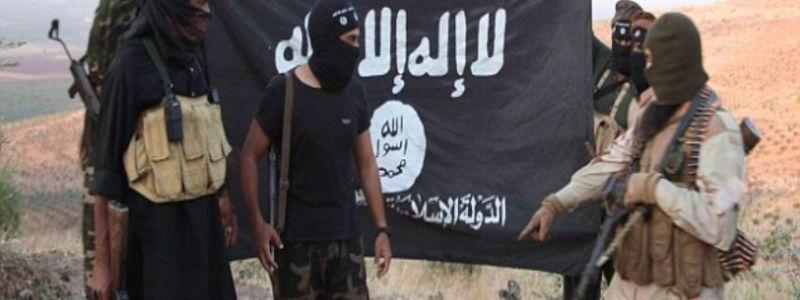 Egyptian forces killed about 15 ISIS suspected terrorists in Sinai