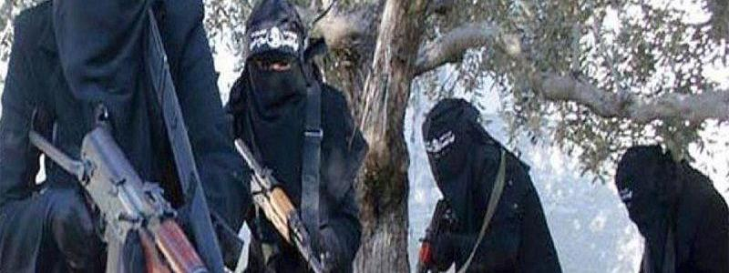 All-female Islamic State backer battalion claims to make infidels 'sleep-deprived'