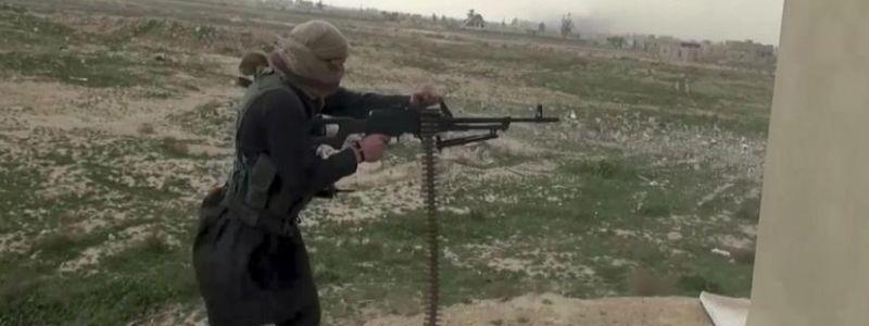 Leaked Islamic State documents dispel long-held stereotypes of terror recruits