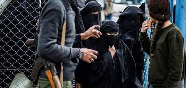 Iraqi authorities offer to try all ISIS foreigners for a fee