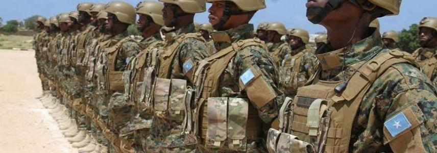 Somali army forces foil major terror attack in southern region