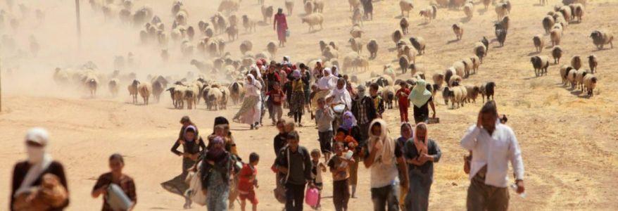 Islamic State crimes against Yazidis constitute genocide