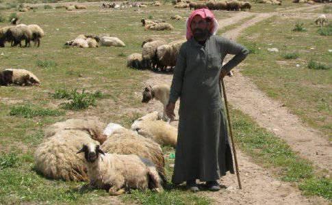 Two Kurdish shepherds rescued from Islamic State captivity