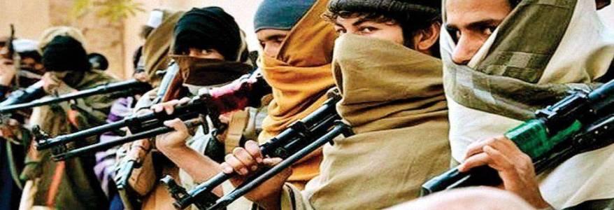 European parliamentarians slam Pakistan for harbouring terrorists