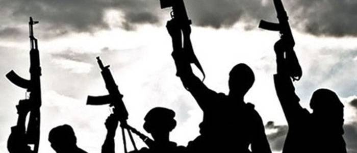 UN report: Significant numbers of Islamic State terrorists in Kerala and Karnataka