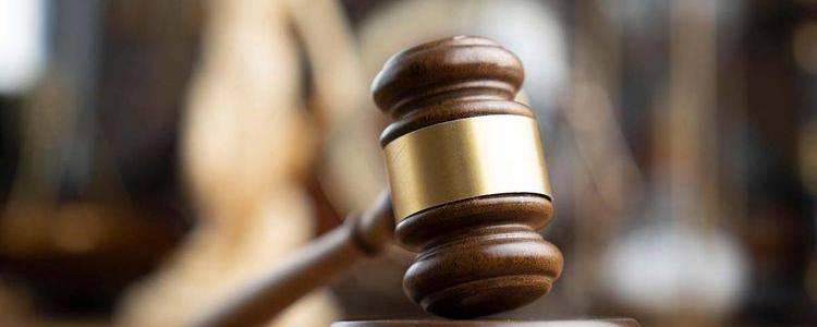 Islamic State twins sentenced to death for murdering mum in Saudi Arabia