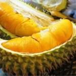 Kenali 11 Jenis Buah Durian Popular dan Digemari Rakyat Malaysia