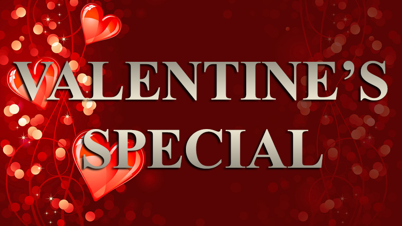 Gemini Firearm Defense Illinois Concealed Carry Valentine`s Day special