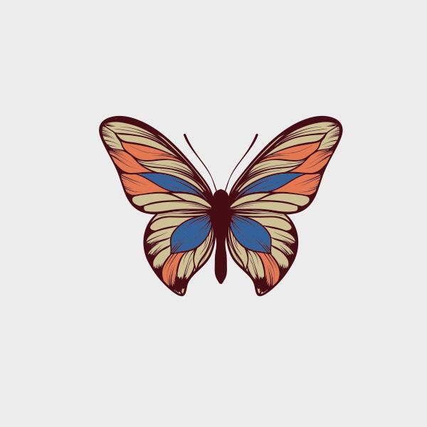 FreeVectorButterfly.jpg