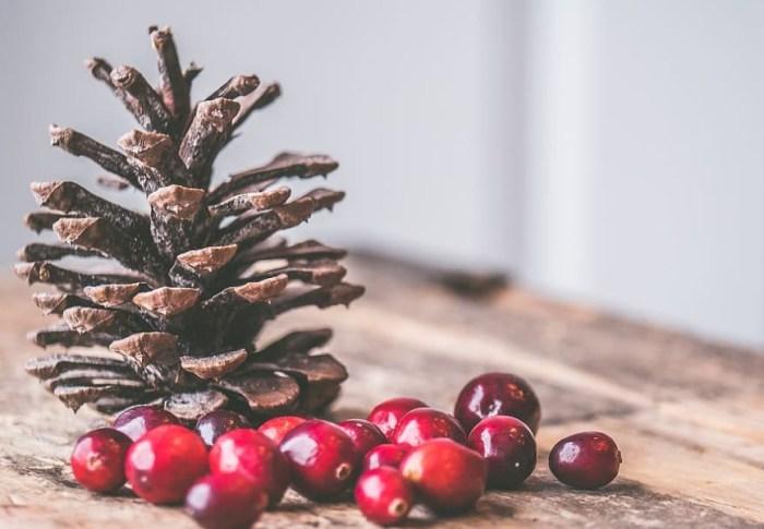 Gezondheidsvoordelen: Cranberry's