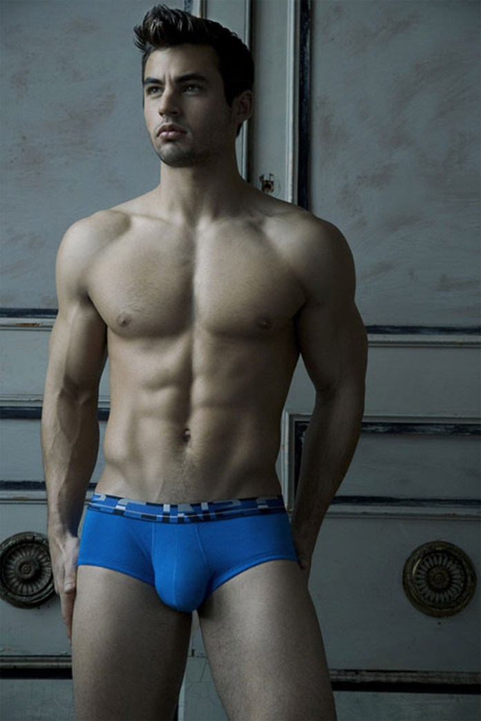 Blue Brief