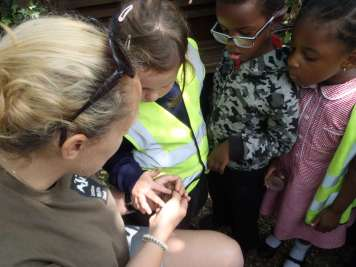 pond dipping 175