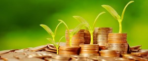 Money growing concept,Business success concept,Trees growing on