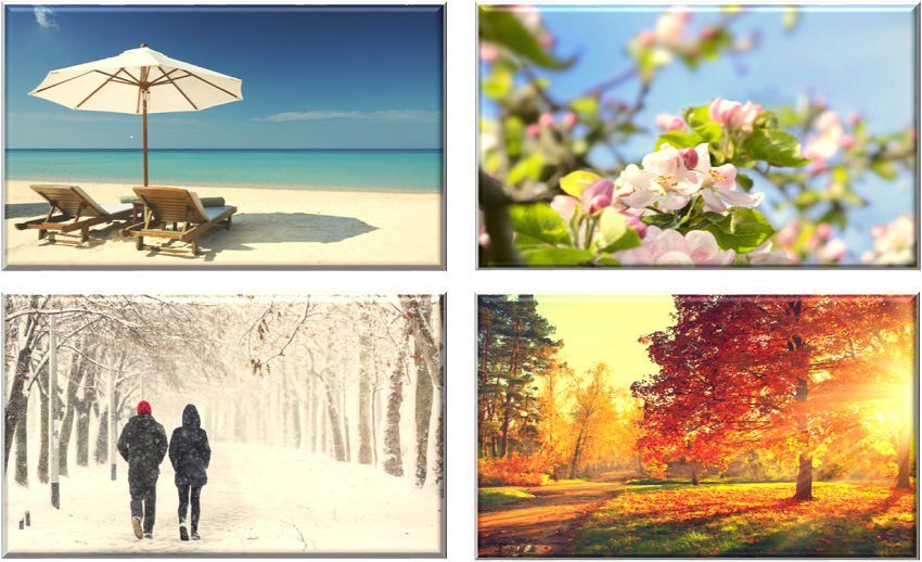 pictures of the four seasons
