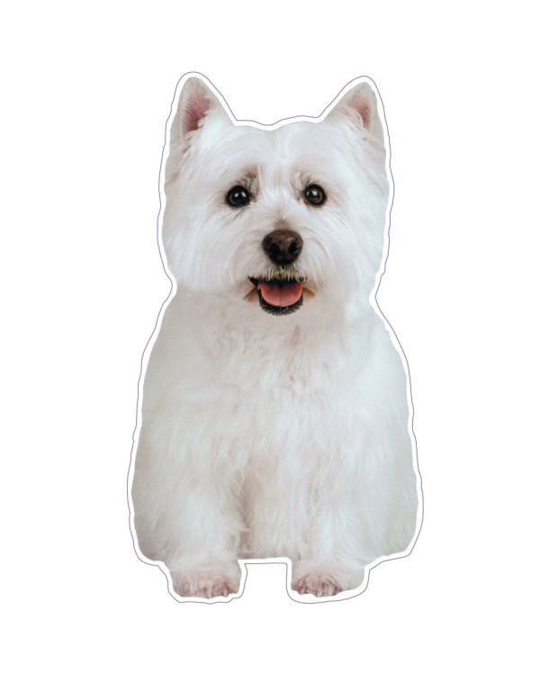 "Westie Magnet or Sticker for Indoor or Outdoor Use 4"" x 7"""