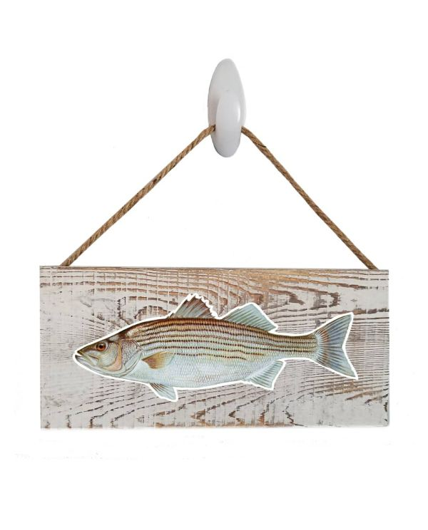 "Striped Bass White Wood Sign. Size: 12"" W x 5.5"" H - With Rope 11"" H -.30 Thick"