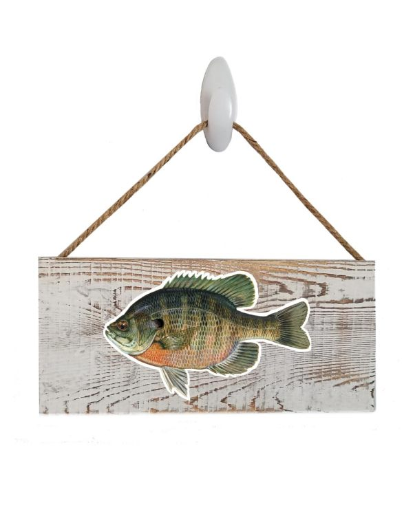 """Bluegill White Wood Sign. Size: 12"""" W x 5.5"""" H - With Rope 11"""" H -.30 Thick"""
