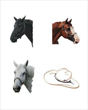 Horse Magnet Lot