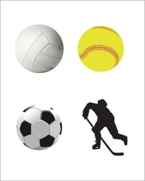 Sports Magnet Set Limited
