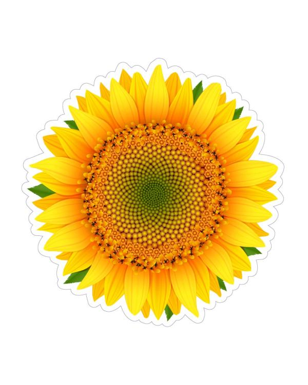 Sunflower Sticker & Magnets for indoor & outdoor use