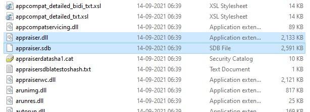Windows 11 Elimina i file di valutazione