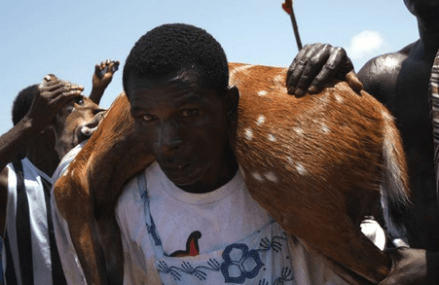 Effutu launches 2016 Aboakyer Festival