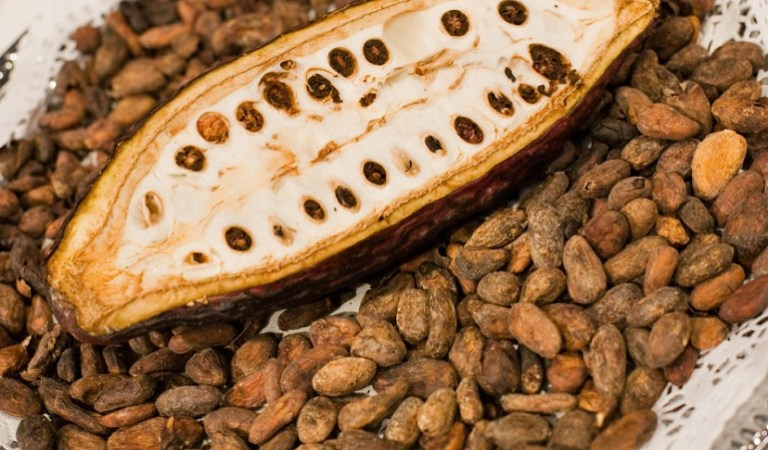 Gov't 'Sensibly' Plans To Use $5m Of A Loan Meant To Boost Cocoa Production To Buy Chocolates To 'Dash' Students