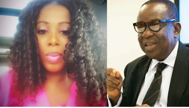 'You're A Disgrace To Women, Beter Go And Beg God for Forgiveness' – Albert Kan Dapaah's Family Trashes Slay Queen Who Leaked His Video, Rain Unprintable Insults On Her