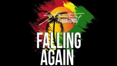 Photo of StoneBwoy – Falling Again ft KoJo Funds (Prod By Mix Masta Garzy)