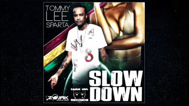 Photo of Tommy Lee Sparta – Slow Down