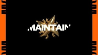 Photo of Kwesi Arthur x Juls – Maintain (Prod. by Juls)